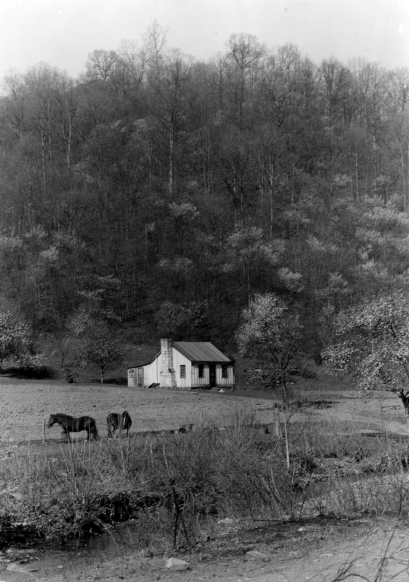 Cabin-Shawnee-Forestry-Image